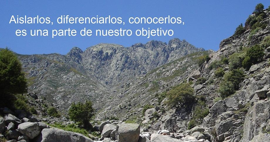 BienvenidaConTexto-Original_03
